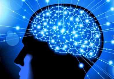 Ученые выяснили, почему у людей большой мозг